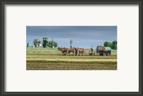 Fertilizing Framed Print By Guy Whiteley