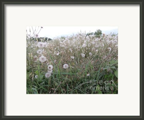 Field Of Youthful Dreams Framed Print By Joseph Baril