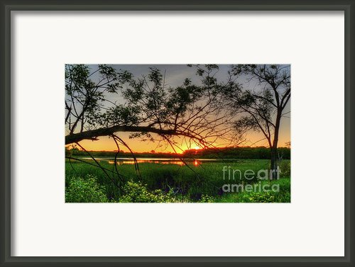 Fiery Swamp Sunset Framed Print By Deborah Smolinske