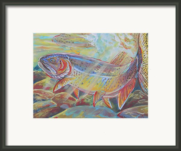 Fine Spotted Cutthroat Trout Framed Print By Jenn Cunningham