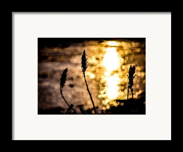 First Day Framed Print By Bob Orsillo