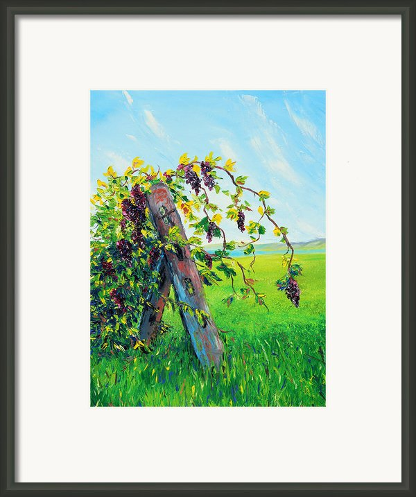 First Fruits Framed Print By Meaghan Troup