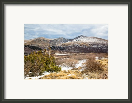 First Snow At Treeline Framed Print By Adam Pender