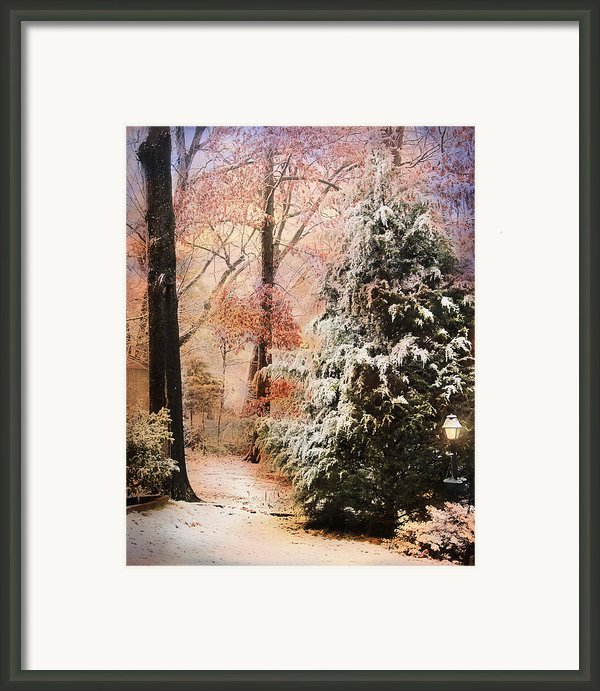 First Snow Framed Print By Jai Johnson