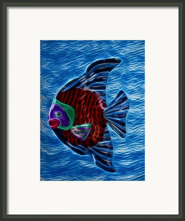 Fish In Water Framed Print By Shane Bechler
