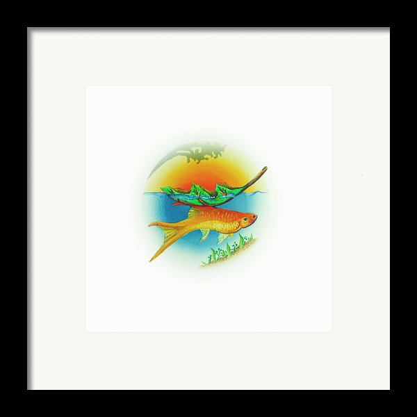 Fishsalad 2 Framed Print By Laura Dozor