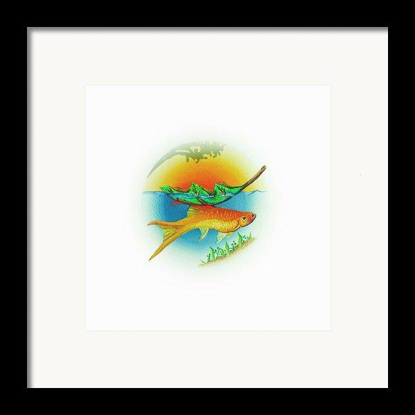Fishsalad 2 Framed Print By Laura Dozor
