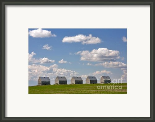Five Sheds On The Alberta Prairie Framed Print By Louise Heusinkveld