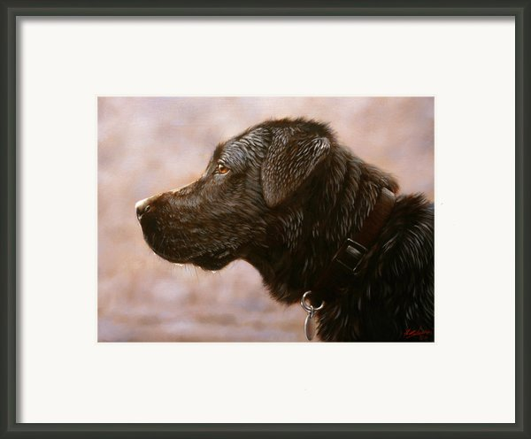 Fixed Gaze Framed Print By John Silver