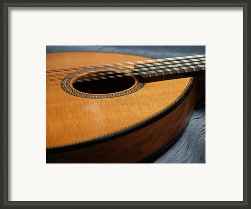 Flatiron Mandolin On Blue Framed Print By Anna Lisa Yoder