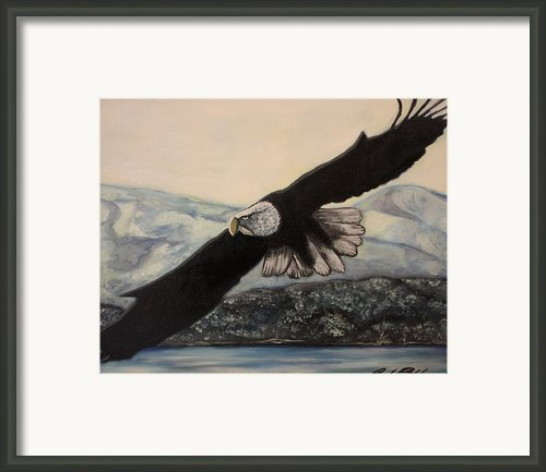 Flight Framed Print By Michael Kulick