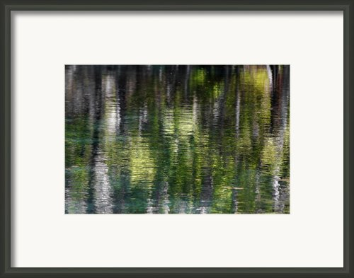 Florida Silver Springs River Framed Print By Christine Till