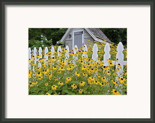 Flower Garden Framed Print By Susan Leggett