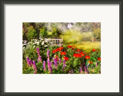 Flower - Poppy - Piece Of Heaven Framed Print By Mike Savad