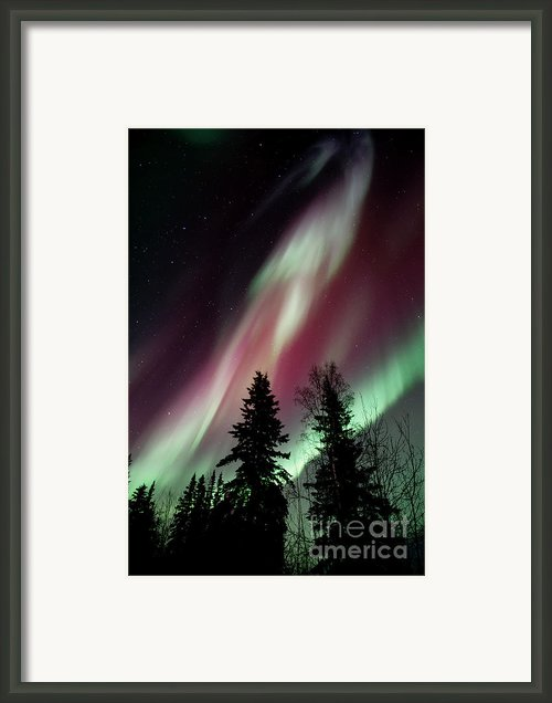 Flowing Colours Framed Print By Priska Wettstein