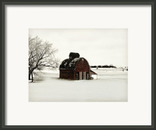 Flurry Framed Print By Julie Hamilton