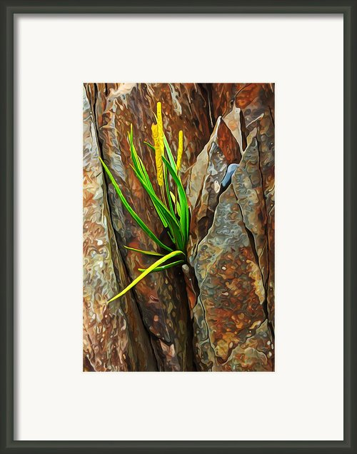 Foothold Framed Print By Abeautifulsky  Photography