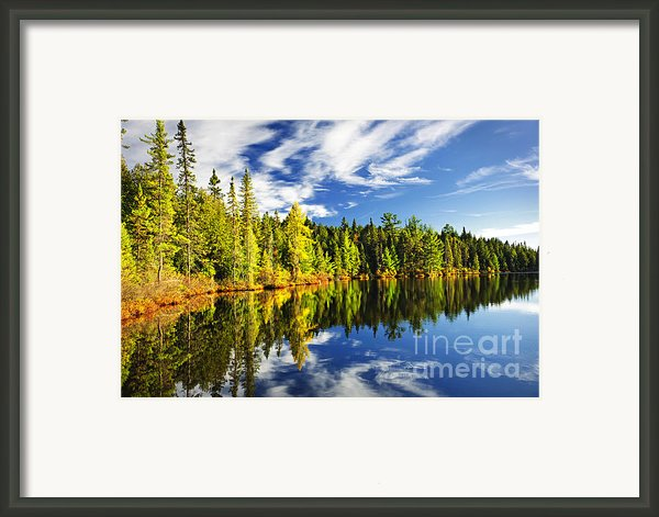 Forest Reflecting In Lake Framed Print By Elena Elisseeva