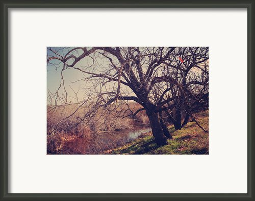 Forever In My Heart Framed Print By Laurie Search
