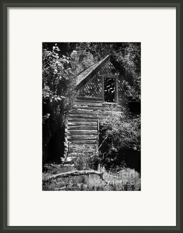 Forgotten Log Cabin Framed Print By Cindy Singleton