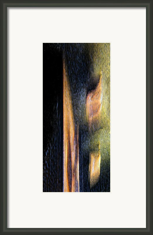 Form And Shadow Framed Print By Murray Bloom