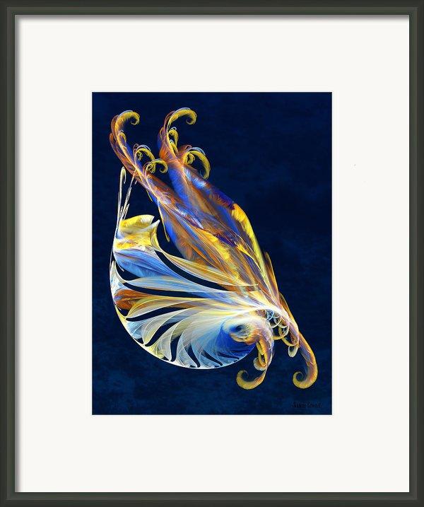 Fractal - Sea Creature Framed Print By Susan Savad