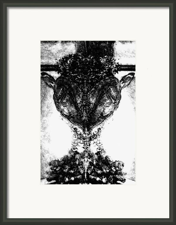 Fred Framed Print By Yevgeni Kacnelson