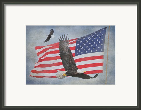 Freedom Flight Framed Print By Angie Vogel