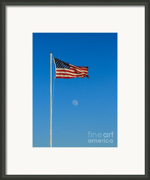 Freedom Framed Print By Robert Bales