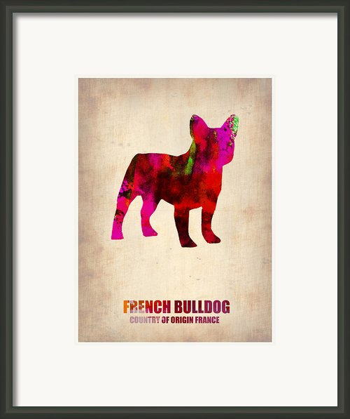 French Bulldog Poster Framed Print By Irina  March