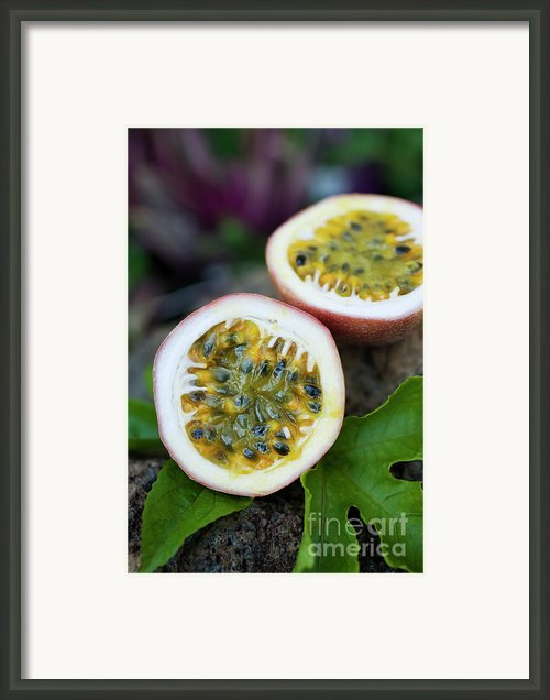 Fresh Cut Lilikoi Fruit Framed Print By Charmian Vistaunet