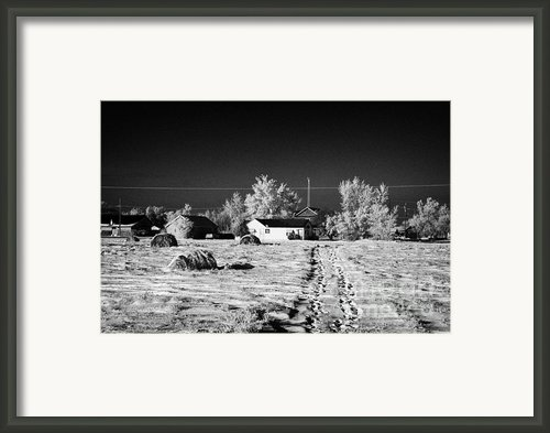 Fresh Footprints Crossing Deep Snow In Field Towards Small Rural Village Of Forget Saskatchewan Cana Framed Print By Joe Fox