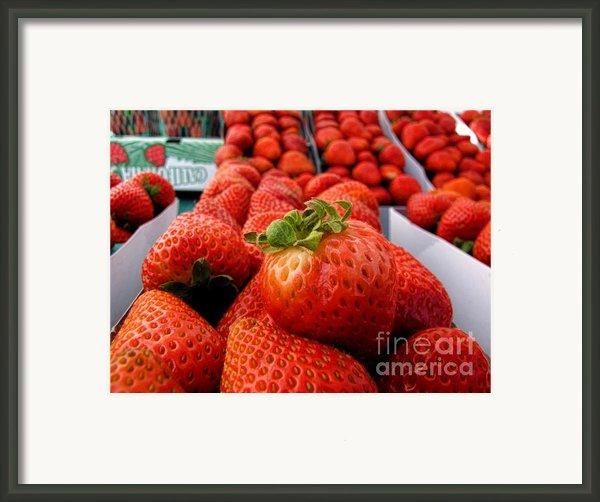 Fresh Strawberries Framed Print By Peggy J Hughes
