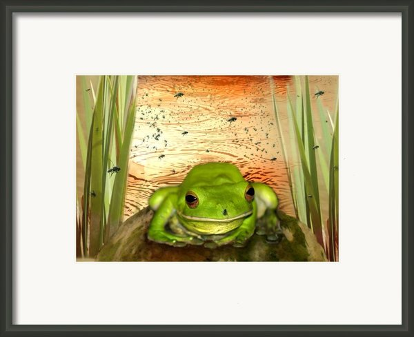 Froggy Heaven Framed Print By Holly Kempe
