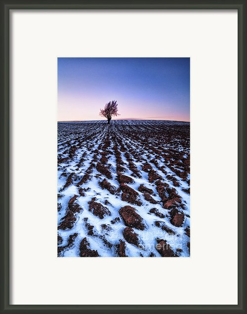 Furows In The Snow Framed Print By John Farnan