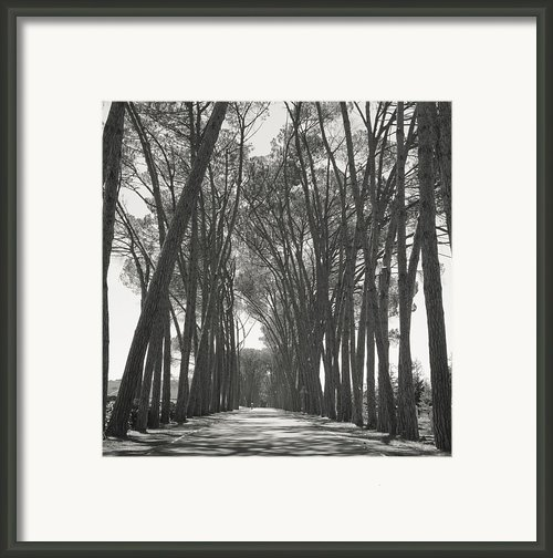 Fv4304, John Hasyn Lane Way Through Framed Print By John Hasyn
