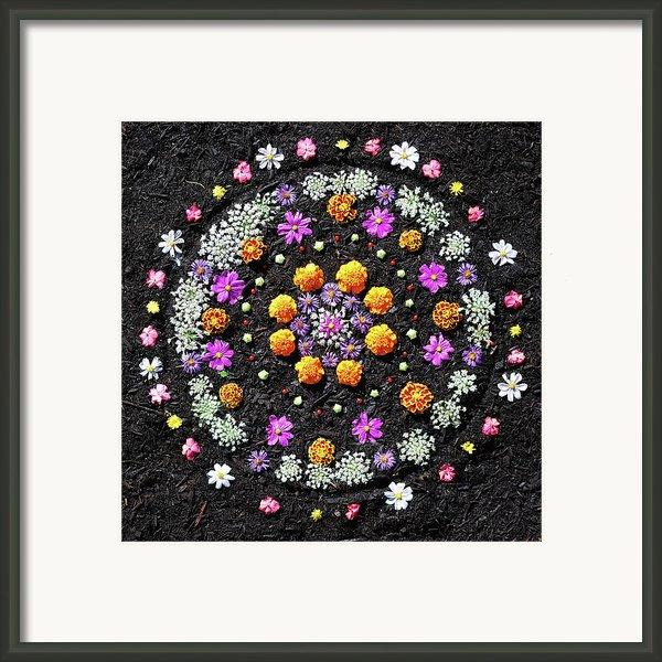 Garden  Mandala 2009  Framed Print By Joseph Duba