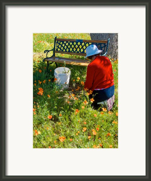 Garden Party In Park Sierra-ca Framed Print By Ruth Hager