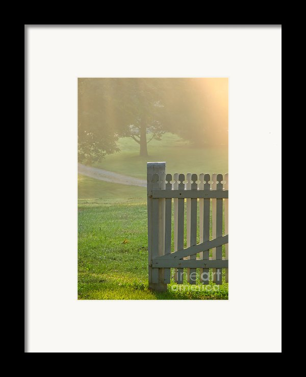 Gate In Morning Fog Framed Print By Olivier Le Queinec
