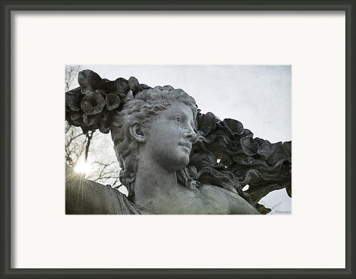 Generous Spirit Framed Print By Terry Rowe
