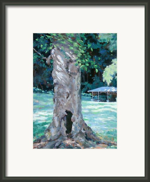 Gentle Giant Framed Print By Sandra Harris