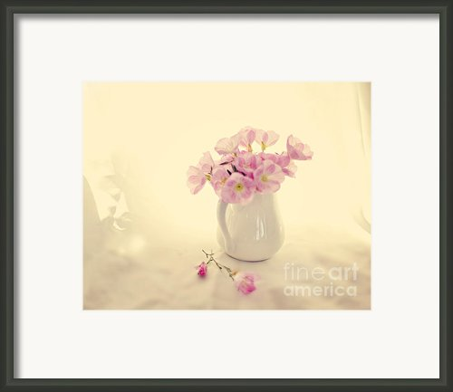 Gentle Light Framed Print By Linde Townsend