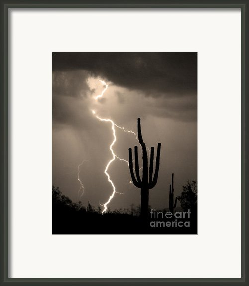 Giant Saguaro Cactus Lightning Strike Sepia  Framed Print By James Bo Insogna
