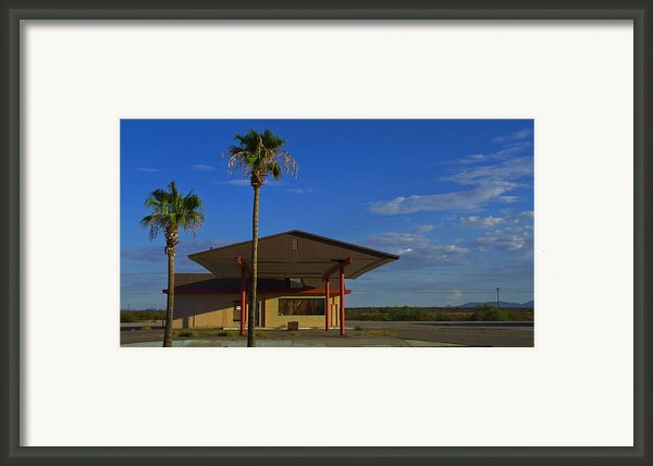 Gila 520208 Framed Print By Skip Hunt