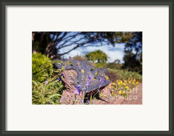 Gilcrease House Garden Flower Framed Print By Tamyra Ayles