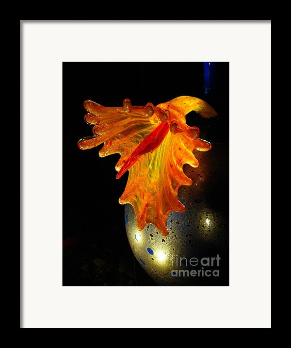 Glass Sculpture Orange Flowerbud Framed Print By Amy Cicconi