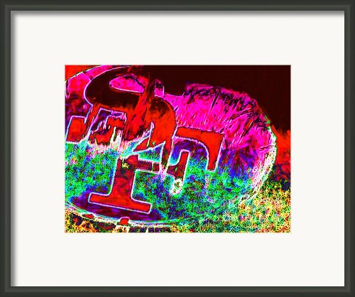 Go Niners 20130115 Framed Print By Wingsdomain Art And Photography