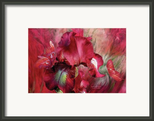 Goddess Of Passion Framed Print By Carol Cavalaris