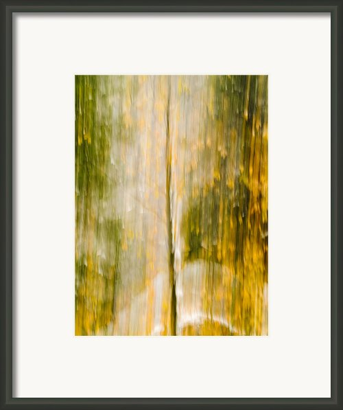 Golden Falls  Framed Print By Bill Gallagher