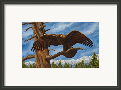 Golden Flex Framed Print By Crista Forest